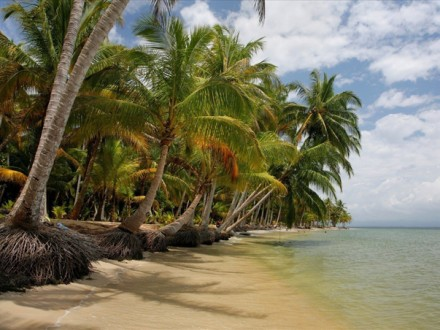 Caribbean 10 days
